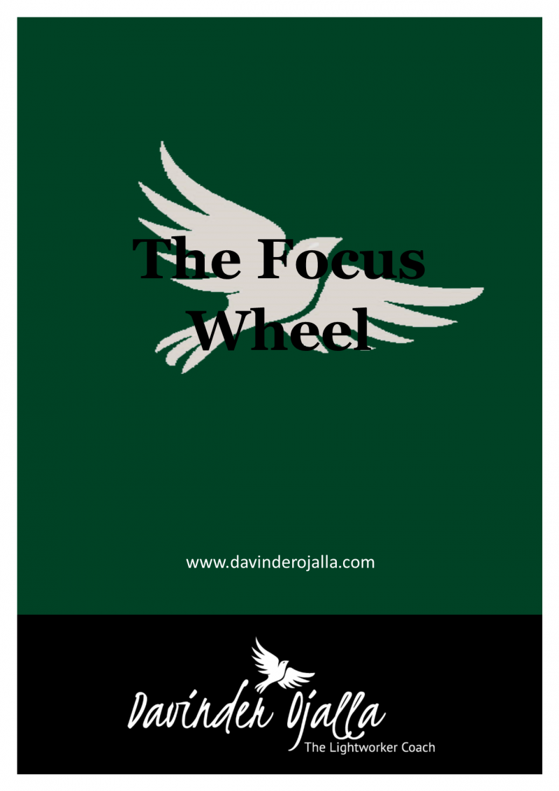 Focus Wheel